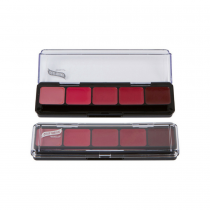 Graftobian HD Lip Color Palette Cool Shades