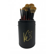 Ve's Favorite Brushes Character Kit