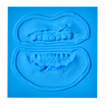 P.T.M. Zombie Teeth Mold