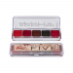 Makeup Palettes Skin Illustrator Bloody Five